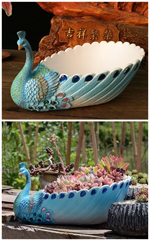 peacock succulent planter pot
