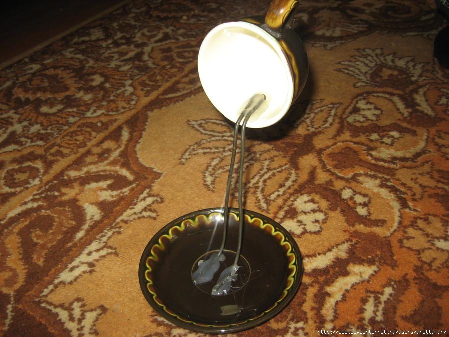 cupped flower06 alternative