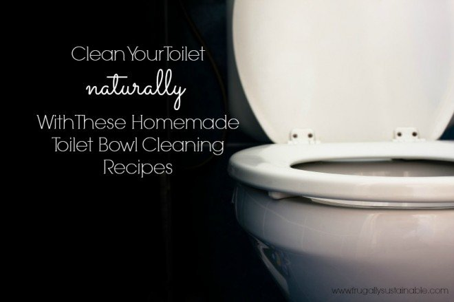 Homemade Toilet Bowl Cleaner