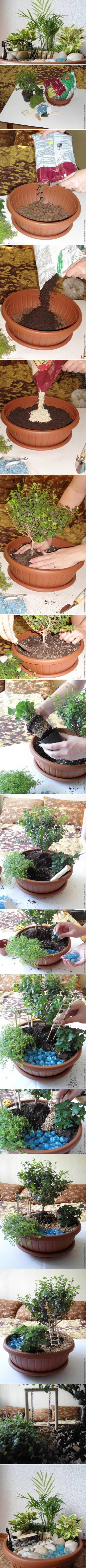 How-to-make-Pot-Mini-Garden-step-by-step-DIY-tutorial-instructions-512x9353