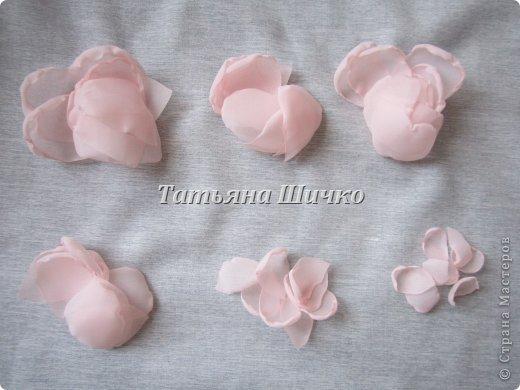 Chiffon-Rose04.jpg