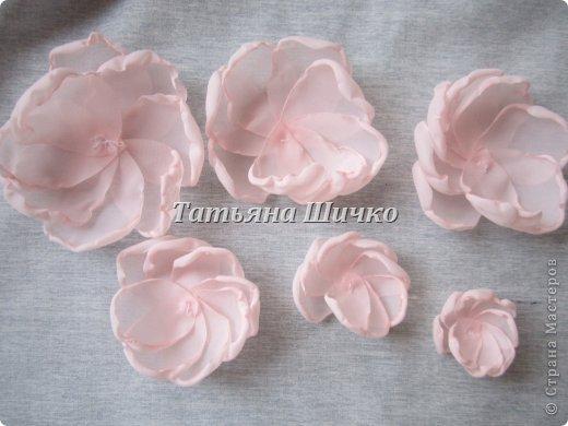 Chiffon-Rose05.jpg