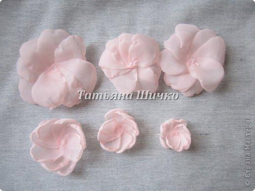 Chiffon-Rose06.jpg
