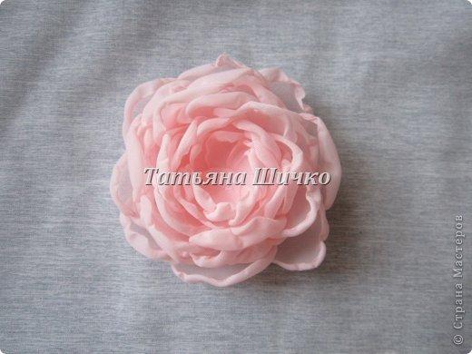 Chiffon-Rose08.jpg