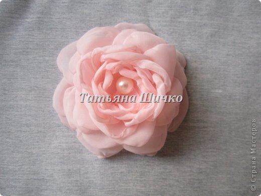 Chiffon-Rose09.jpg