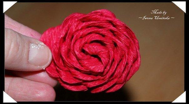 Crepe-paper-flower-ball09.jpg