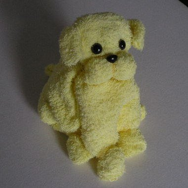 Cute puppy from towel01