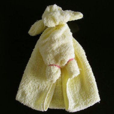 Cute puppy from towel05