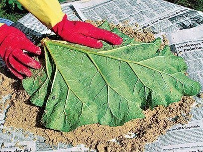 DIY-Sand-Cast-Birdbath-in-Leaf-Shape04.jpg
