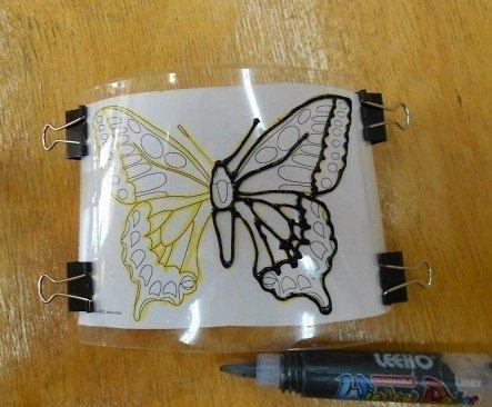 butterfly-from-bottle3.jpg