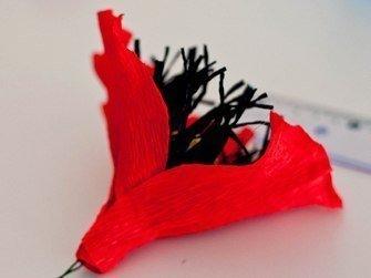 chocolate-paper-poppies07.jpg
