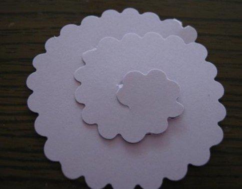 paper-flower-wallart01.jpg