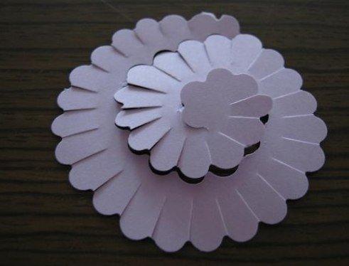 paper-flower-wallart02.jpg