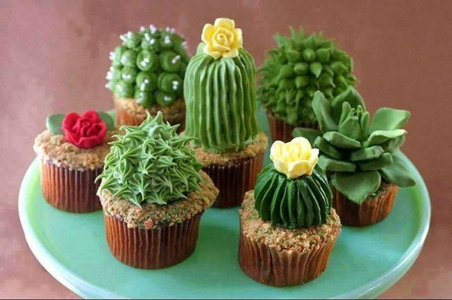 DIY House Plant Cupcakes - Cactus Cupcakes