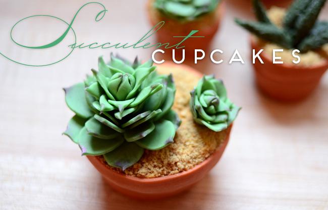 DIY House Plant Cupcakes - Succulent Cupcakes