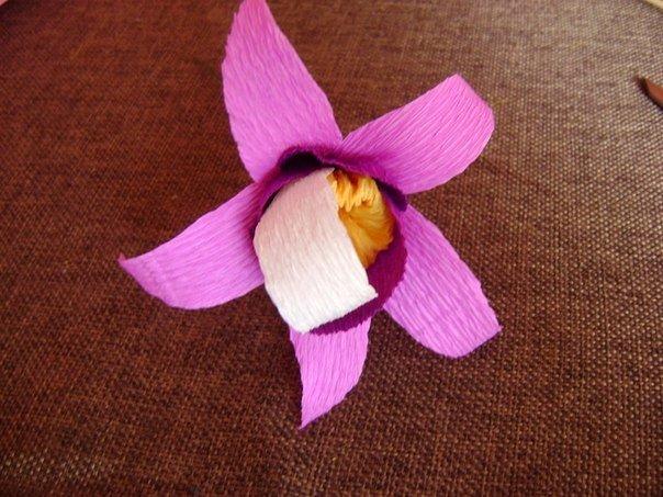 crepe-paper-orchid09.jpg