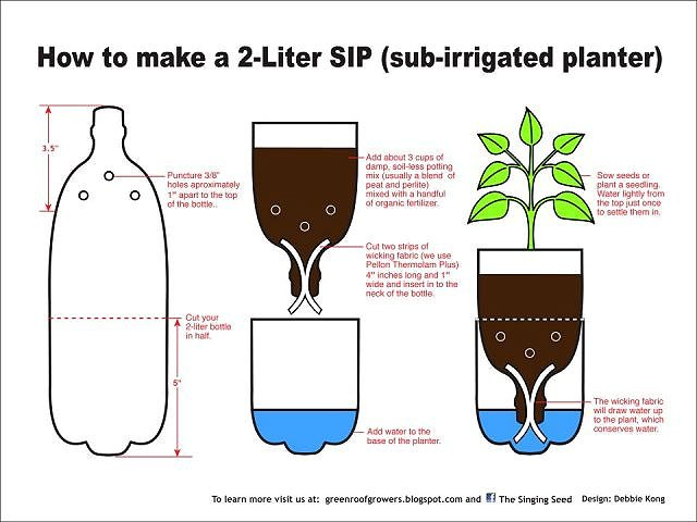 container-self-watering-bottle