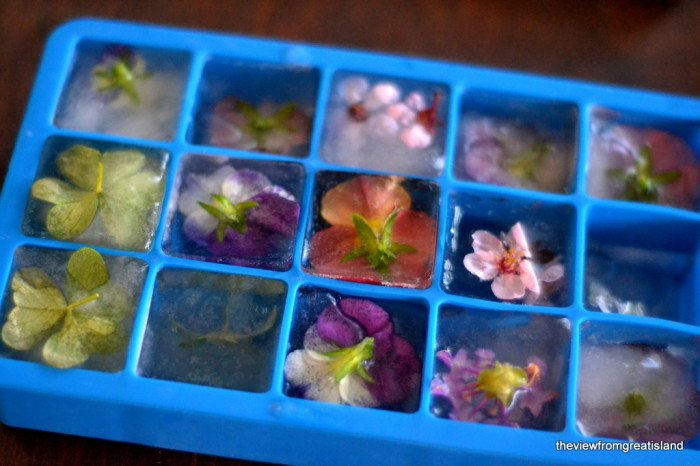 creative-ideas-on-ice-cubes00.jpg