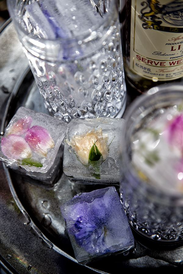 creative-ideas-on-ice-cubes11.jpg