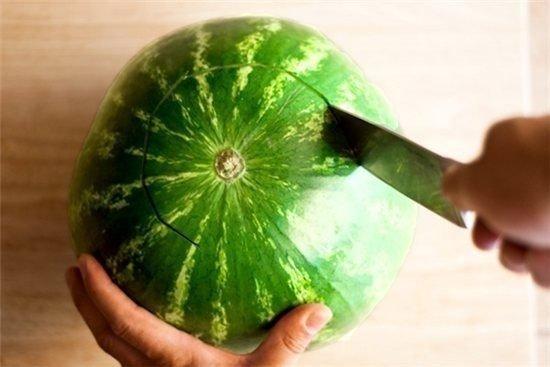watermelon-cocktail-dispenser03.jpg