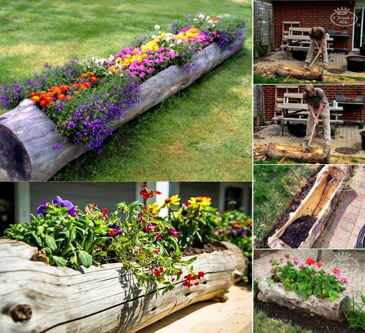 diy hollowed tree wood planters