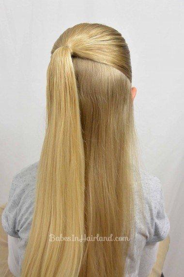 double-braided-haircupdo02.jpg