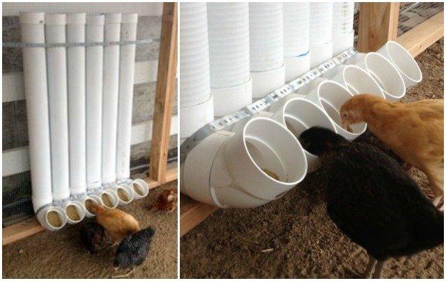 DIY PVC Chicken Feeder Tutorial