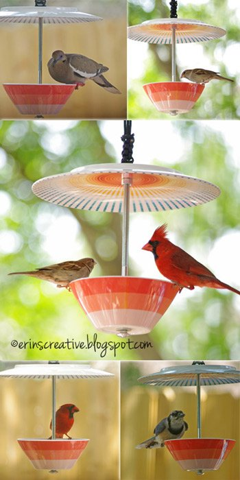 DIY Teacup Bird Feeder Collections and Tutorials