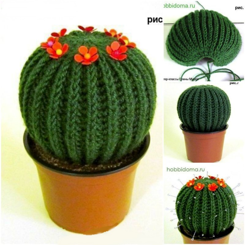 How to DIY Knitted Cactus