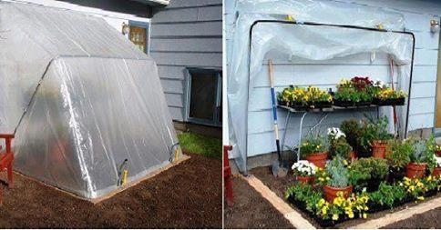fold down green house