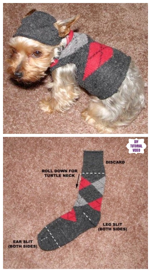 DIY Pet Coat and Sweater Free Sew Patterns & Tutorials - DIY dog jumper sweater from socks