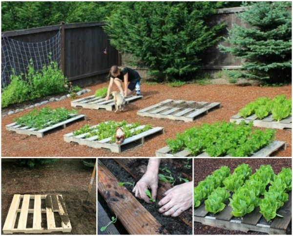 DIY Recycled Pallet Garden Planting Tutorial