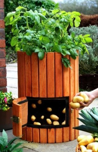 How to Grow 100 Pounds of Potatoes in A Barrel (Video)