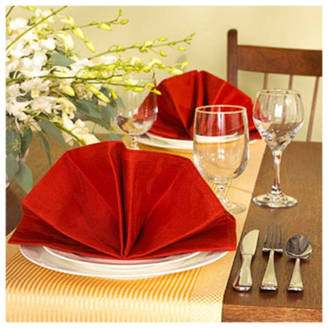 20 Best DIY Napkin Folding Tutorials for Christmas - Elegant Fan Napkin Folding DIY Tutorial