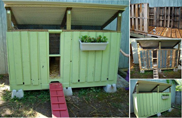 DIY Backyard Chicken Coop 4