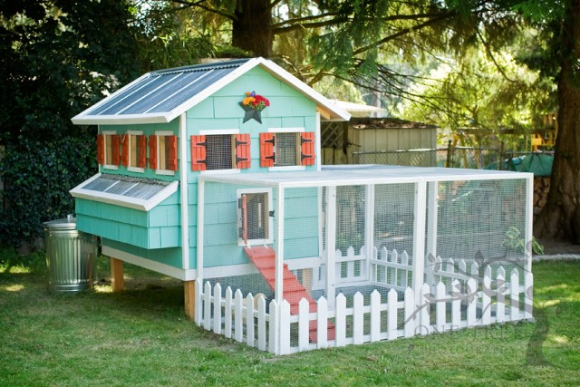 10+ DIY Backyard Chicken Coop Plans and Tutorials