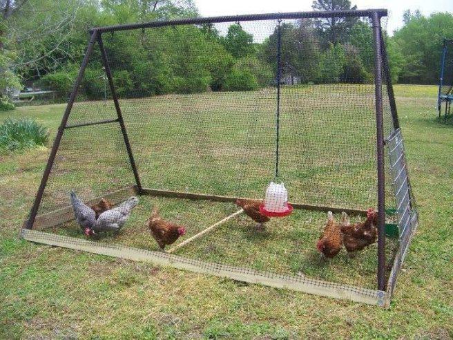 DIY Backyard Chicken Coop 12- DIY Swing Set Chicken Coop Tutorial