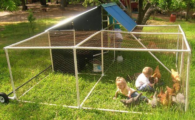 DIY Backyard Chicken Coop9