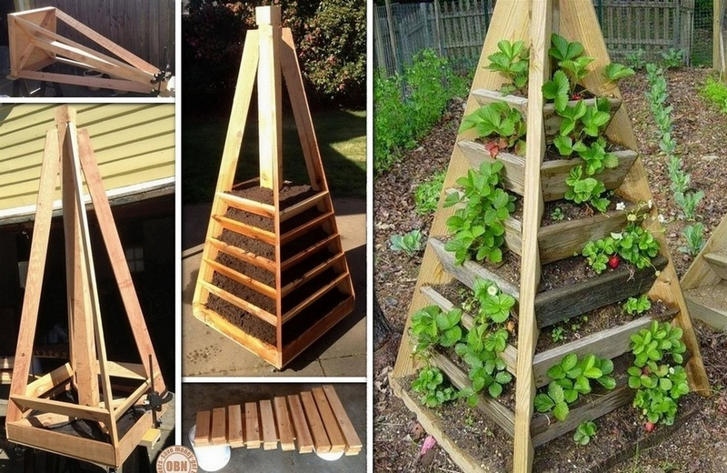 Pyramid Tower Garden| Incredible Tower Garden Ideas For Homesteading In Limited Space