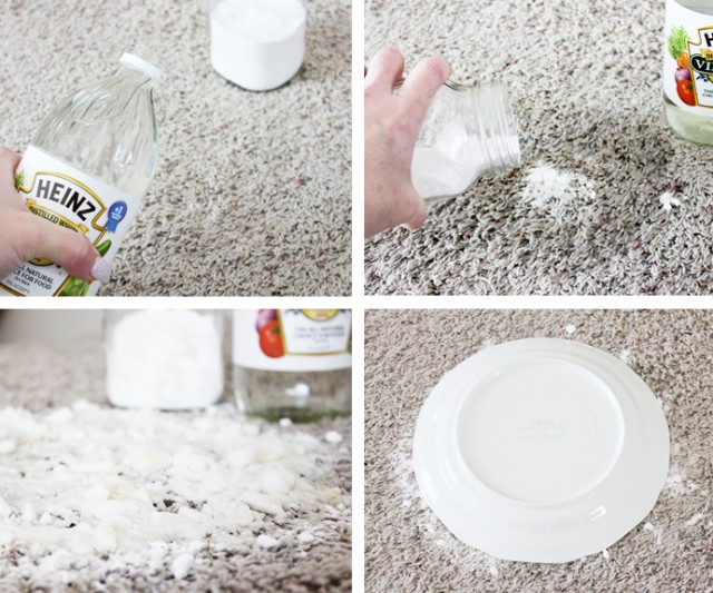 How to Remove Pet stains on Carpet