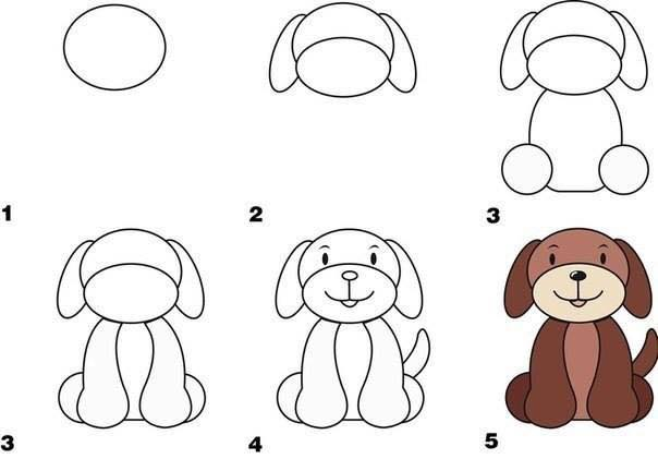 How to draw animals5