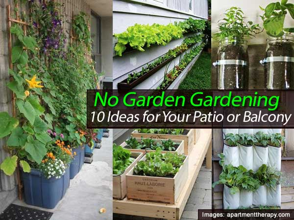 No garden gardening 10 ideas for your patio or balcony for What does balcony mean