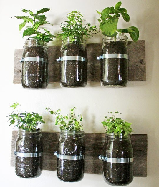 Canning jars panter mounted to the wall