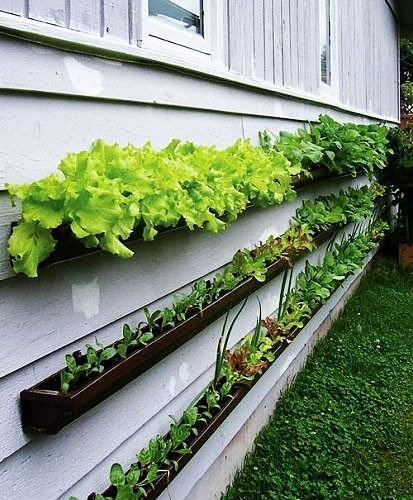 Gutters easily mount to a wall