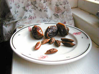 How to Grow Date Palm from Seeds