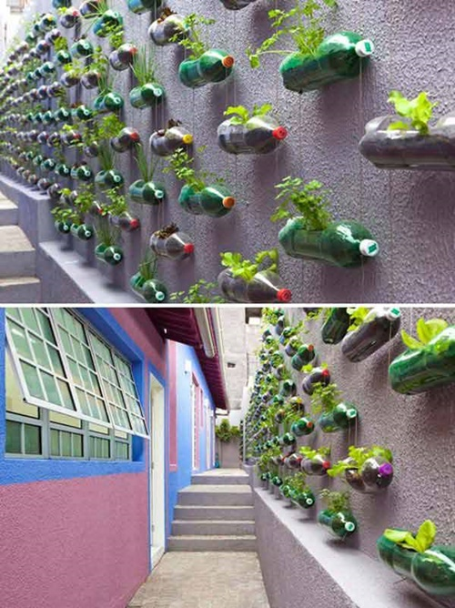Diy ideas and projects to recycle plastic bottles for Garden design using plastic bottles