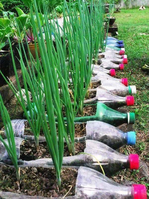 40+ Fab Art DIY Ideas and Projects to Recycle Plastic Bottles Into Something Amazing25