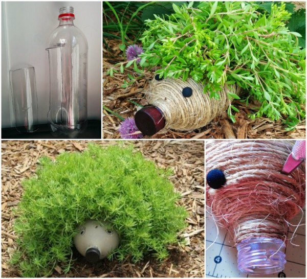 Diy Plastic Bottle Hedgehog Planter