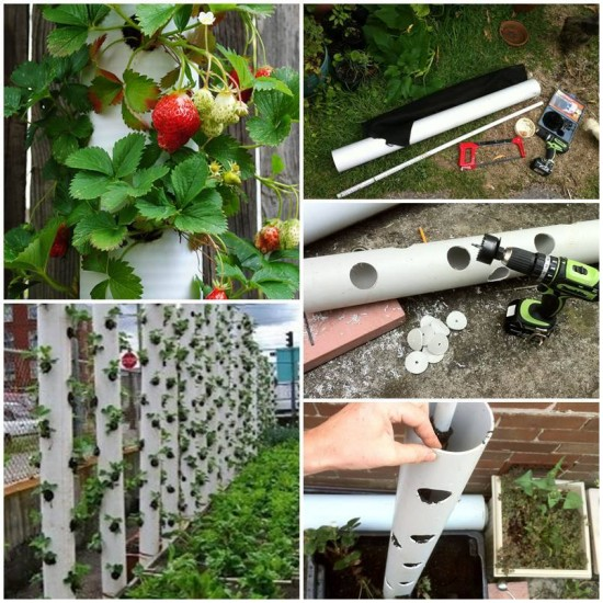Vertical PVC Strawberry Towel Planter Tutorial- DIY PVC Gardening Ideas and Projects