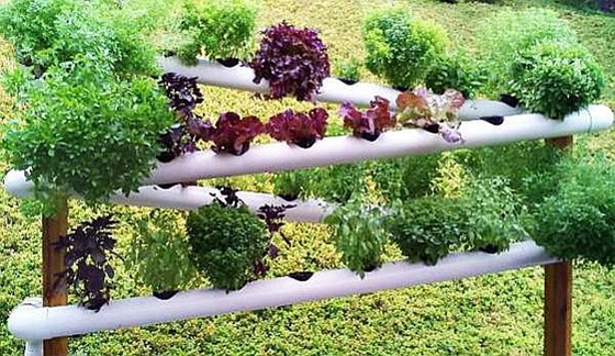 DIY PVC Gardening Ideas and Projects - DIY Hydroponic Garden Tower